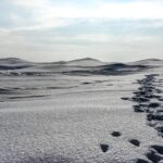 steps in the ice dunes